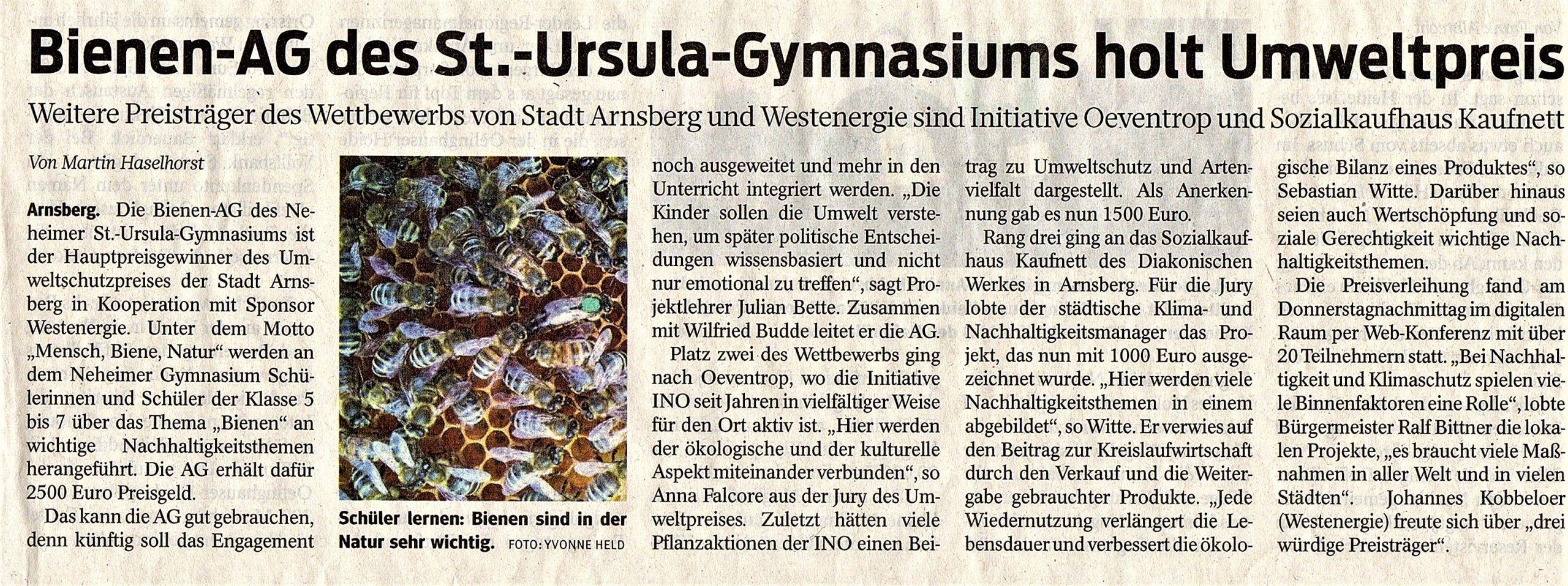 Zeitungsartikel zum Innovationspreis